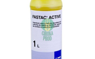 FASTAC ACTIVE